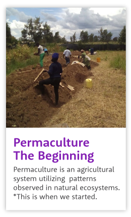 Beginning permaculture at Agatha Amani House